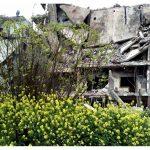 Syrie : récit de voyage, entre espoir, résilience et perte